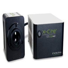 X-Cite 120LEDmini